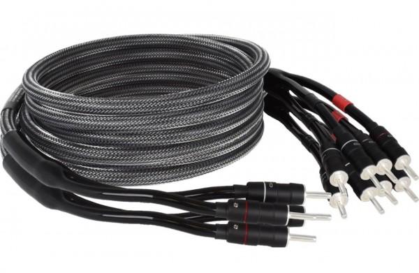 Goldkabel Executive LS440 Kryo Bi-Wire