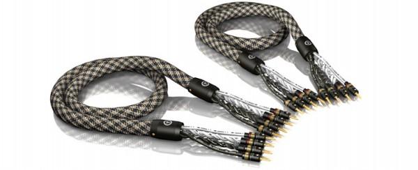 ViaBlue SC-6 Silver Tri-Wire Lautsprecherkabel T6s