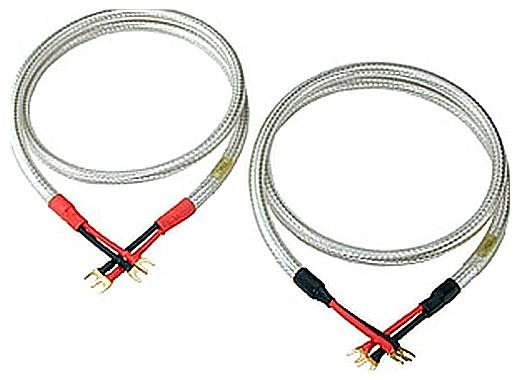 Straight Wire Expressivo