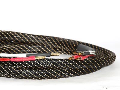 TCI King Cobra - BiWire